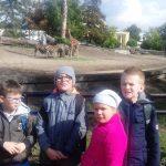 Jedziemy do zoo_2